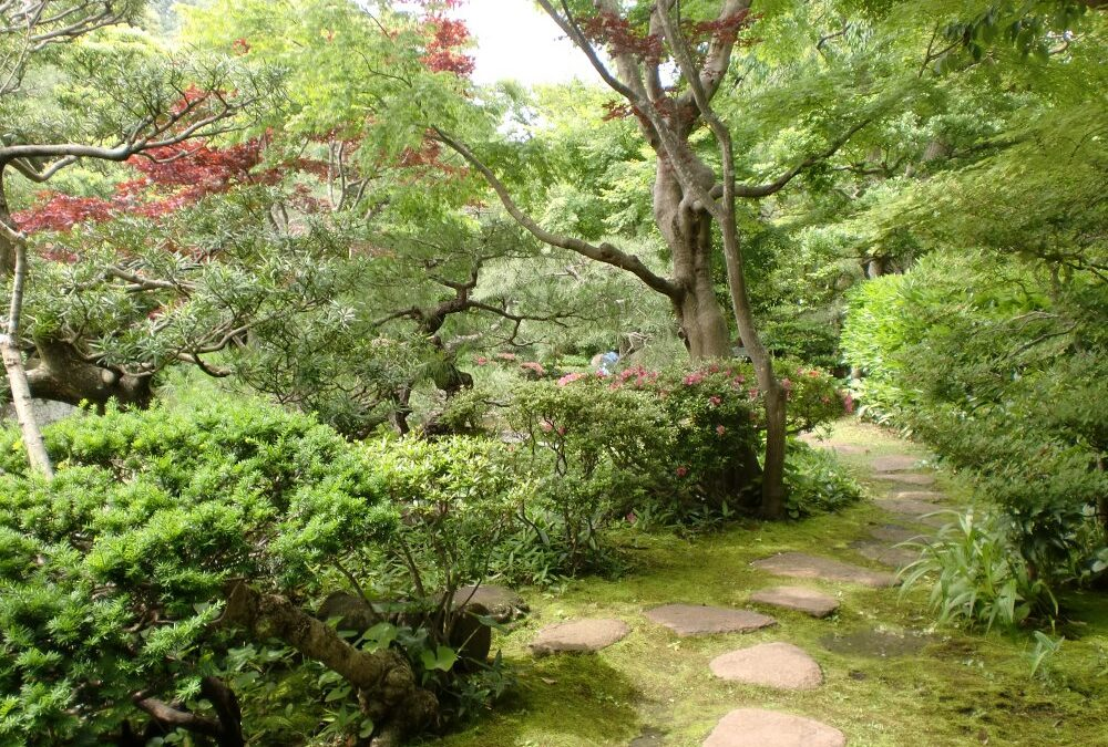 Japonsko 4.6.2011